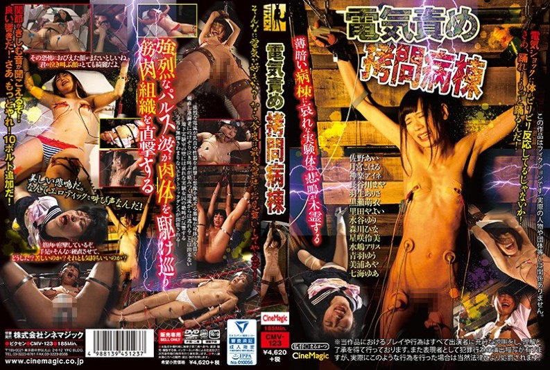 (CMV-123) Electrical Blame Torture Ward