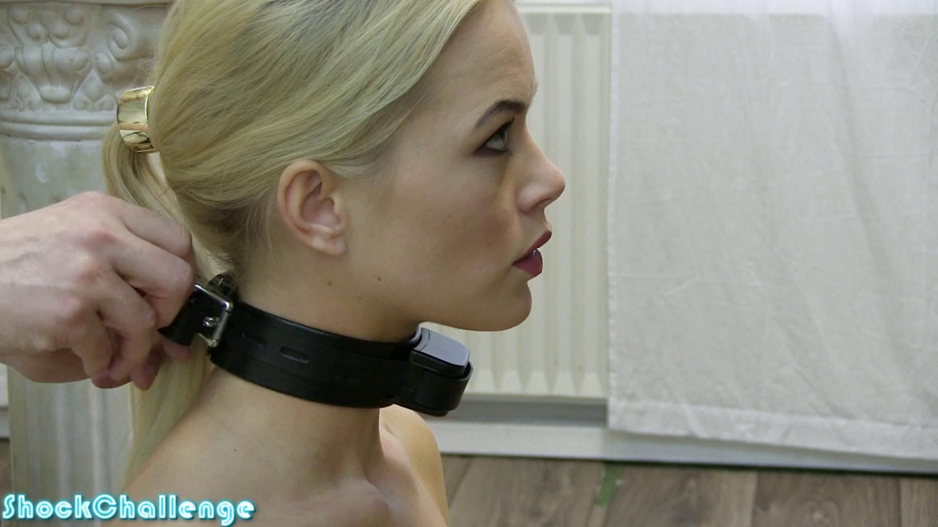Sophie Shock Collar Up To 12